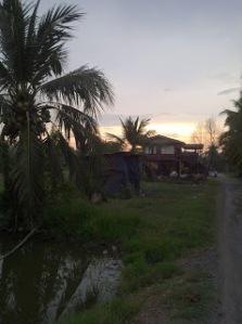 IMG-20120310-00779
